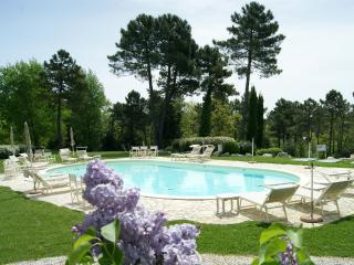 Holiday home apartament near SAN GIMIGNANO, FIREN - Gambassi Terme vacation rentals