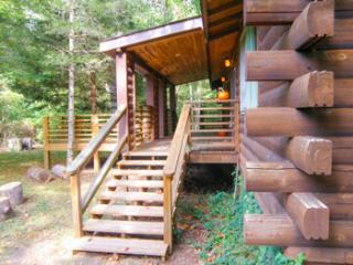 Creek Front Cabin - Mountain Hollow - Franklin vacation rentals