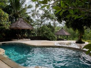 Riverview Villa Ubud - Pejeng vacation rentals