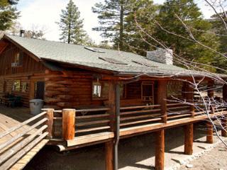 Edelweiss Log Cabin - Idyllwild vacation rentals