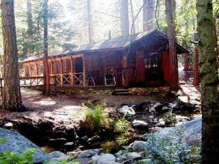 Twin Tree Cottage - Idyllwild vacation rentals