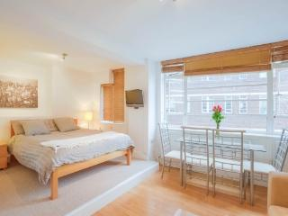South Kensington comfort studio - London vacation rentals
