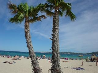 Mobile Home rental 150 metres from the beach - Port Grimaud vacation rentals