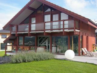 Villa neuve ossature bois à Villy-le-Pelloux  8per - Villy-le-Pelloux vacation rentals