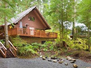 #98 Cozy Mt. Baker Cabin with a Hot Tub and WiFi - Glacier vacation rentals