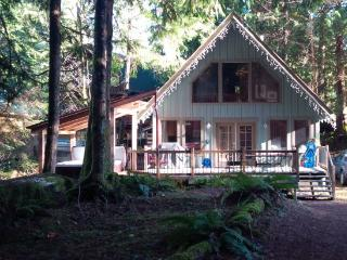 #99 Charming woodsy cabin with a private hot tub! - Glacier vacation rentals
