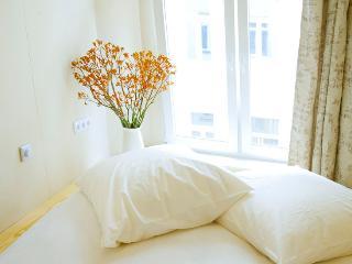 Berlin Mitten Drin - luxury 5-room apartment - Berlin vacation rentals