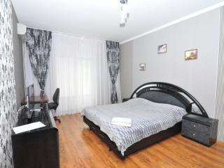 Center of Chisinau! main street Stefan cel Mare64 - Chisinau vacation rentals