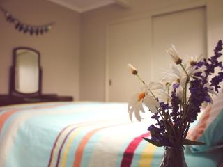 Hahei Sunscape - Hahei vacation rentals