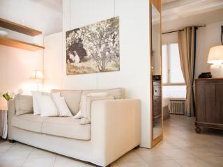 Charming and cozy apartment in historic centre wf - Bologna vacation rentals