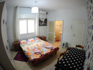 Care4U near BWC - Haifa vacation rentals
