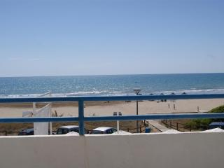 PRIMERA LINEA PLAYA CARGADOR - 4/6 estandar - Alcossebre vacation rentals
