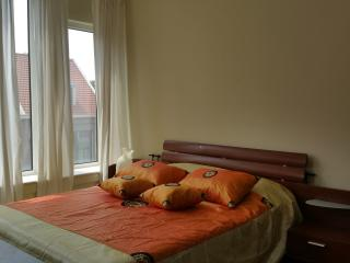 200M2 spacious Town house with garden - The Hague vacation rentals