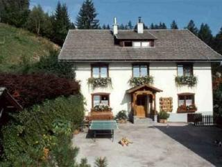 Haus Tonelehof (Apartment with Lawn) - Carinthia vacation rentals