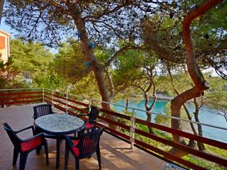 Apartments Antun - 40631-A2 - Cove Basina (Jelsa) vacation rentals