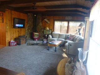 Cabin house near Yosemite - Oakhurst vacation rentals