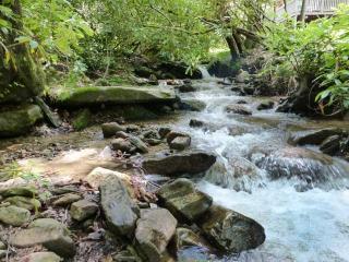 Maison Ruisseau - Maggie Valley vacation rentals