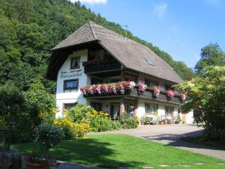 Vacation Apartment in Bad Peterstal-Griesbach - 409 sqft, max. 2 pers. (# 7647) - Bad Peterstal-Griesbach vacation rentals