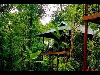 Monsoon Retreats Homestay - Thekkady vacation rentals
