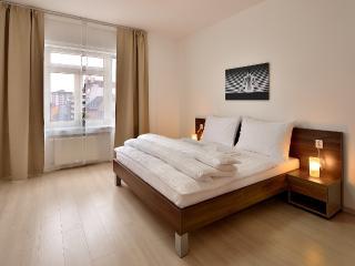 Ambiente III - Bratislava vacation rentals