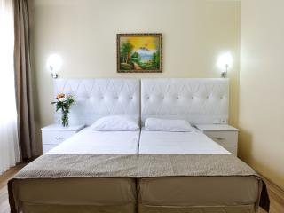 Sultanahmet- 2 BD apartment near Blue mosque - Istanbul vacation rentals
