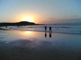 As a couple, family or friends, panoramic sea view - Saint-Lunaire vacation rentals