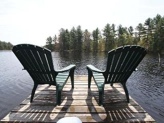 Barry's View cottage (#970) - Point Au Baril vacation rentals
