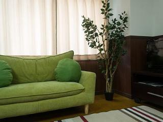 Beautiful Large Apartment near the River - Kyoto vacation rentals
