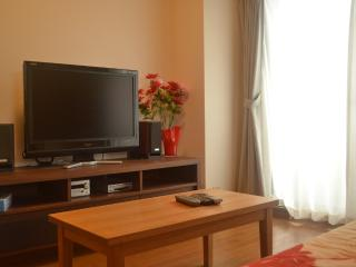 Beautiful Family Apartment in Central Kyoto - Kyoto vacation rentals