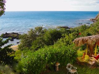 Avita Villa - Treasure Beach vacation rentals