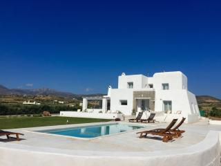 Villa Aria with private pool next to Naoussa - Naoussa vacation rentals