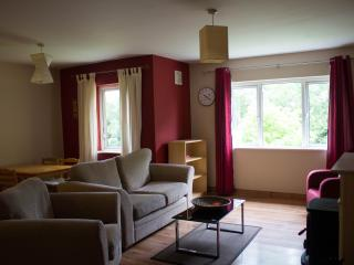 Cosy Two Bedroom apartment - Ennis vacation rentals