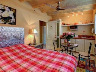 Casa's Artista's: the Frida studio DOWNTOWN!! - San Miguel de Allende vacation rentals