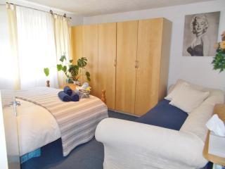 NICE DOUBLE ROOM / Breakfast West London Harrow - Harrow vacation rentals