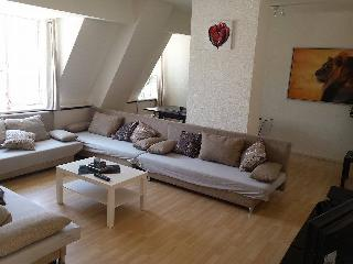Big Penthouse 9 Straatje - Amsterdam vacation rentals