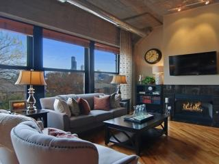 ENTIRE LUXURY LOFT - COME AND RELAX - Chicago vacation rentals