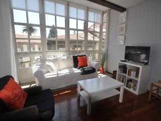 2BD LONG TERM APT IN HISTORIC AREA - Santiago de Compostela vacation rentals