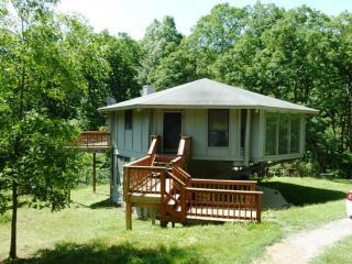 Tree Top Lodge - Bentonville vacation rentals