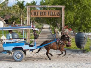 Gili Eco 2BR Luxury Villas Private Pool on Beach - Gili Trawangan vacation rentals