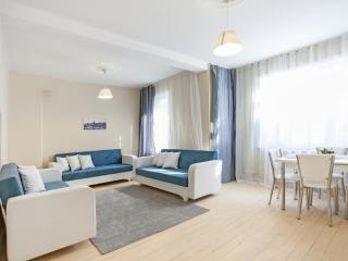 705 / Grand and elegant apartment/3 bd - Istanbul vacation rentals