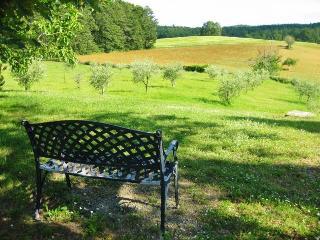 Agriturismo Natura e Salute - San Gimignano vacation rentals