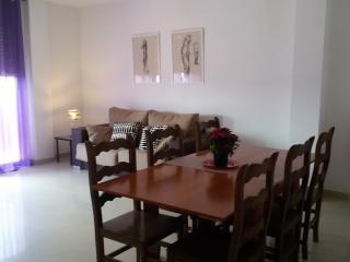 Gran casa al lado de la playa - Pineda de Mar vacation rentals