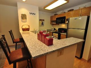 Liftside Condominiums 202 - Stainless steel appliances, amazing ski area views, walk to slopes! - Keystone vacation rentals