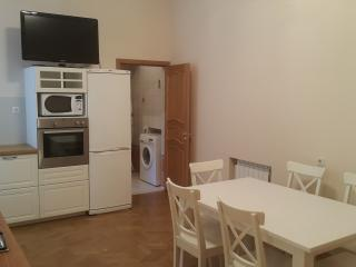 The smart apartment in the center of St.Petersburg - Saint Petersburg vacation rentals