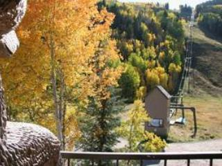 Cimarron Lodge 13 - Telluride vacation rentals