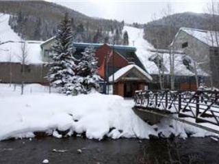 Cimarron Lodge 20 - Image 1 - Telluride - rentals