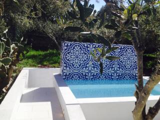 Sicilian Villa with private pool & outdoor cinema - Fontane Bianche vacation rentals