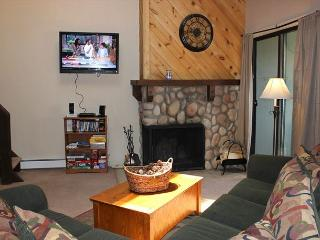 Super Condo w/Wifi, Clubhouse, Fireplace, King Bed - Silverthorne vacation rentals