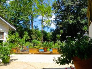 Mid-Town Pool Side Bungalow - Tallahassee vacation rentals