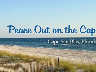 Peace Out on the Cape - Cape San Blas vacation rentals